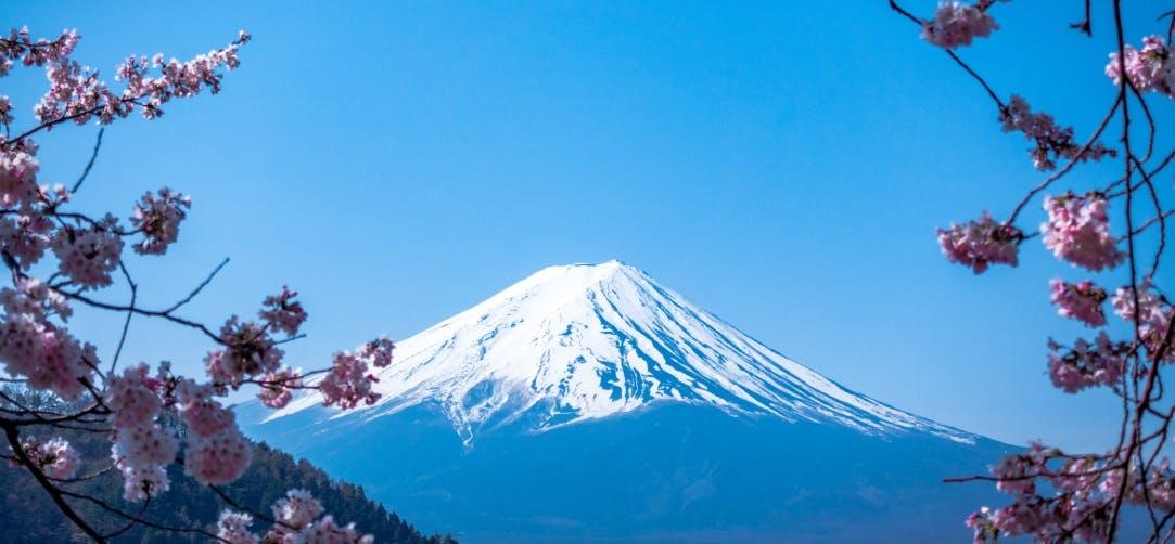Flights To Osaka And Tokyo From 614 Return On Qantas All